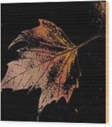 Leaf On Bricks Wood Print