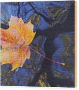 Leaf On The Water Wood Print