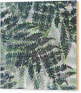 Leaf Patterns Wood Print