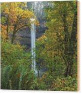 Leaf Peeping And Waterfall Wood Print
