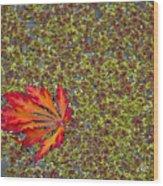Leaf Pond Wood Print