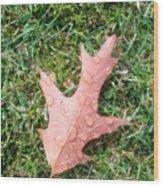 Leaf Resisting The Rain Wood Print