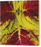 Leaf Study Wood Print