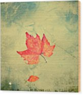 Leaf Upon The Water Wood Print by Bill Cannon