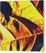 Leaf Veins Abstract Wood Print
