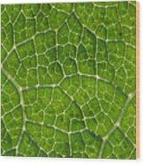 Leaf Veins Wood Print