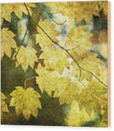 Leaf Zen T Wood Print