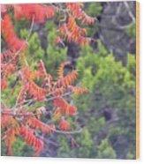 Leafs 008 Wood Print