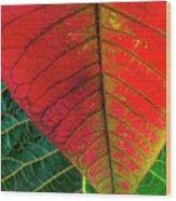 Leafs Macro Wood Print