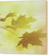 Leafs Wood Print