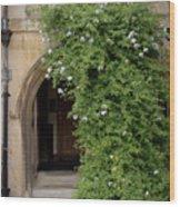 Leafy Archway  Wood Print