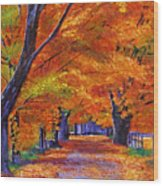 Leafy Lane Wood Print by David Lloyd Glover