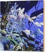 Leafy Sea Dragon Wood Print by Kelly Mills