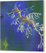 Leafy Sea Dragon Wood Print by Thanh Thuy Nguyen
