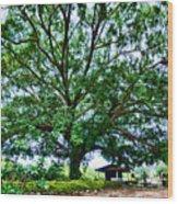 Leafy Tree Wood Print