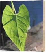 Leafy Veins Wood Print