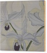 Lealia Purpurata   Orchide Wood Print