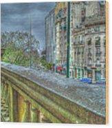 Leandro Lam Wood Print
