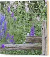 Leaning On The Fence Wood Print