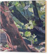 Leaning Tree At Eno River Wood Print