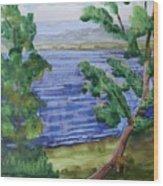 Leaning Tree By Lake Sacandaga Wood Print