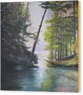 Leaning Tree Lake George Wood Print