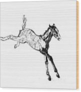 Leaping Foal Wood Print