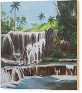 Leaping Waterfall Wood Print