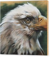 Leather Eagle Wood Print by J W Baker