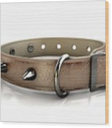 Leather Studded Collar Wood Print
