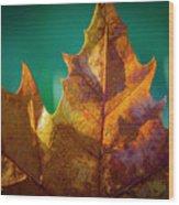 Leaves 971 Wood Print