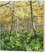Leaves and Ferns Wood Print