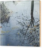 Leaves And Reeds On Tree Reflection Wood Print