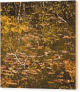 Leaves And Reflections Wood Print by Susan Cole Kelly