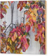 Leaves And Vines Wood Print