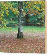 Leaves Blowing Off The Autumn Tree Wood Print