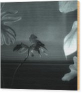 Leaves By Moonlight Wood Print
