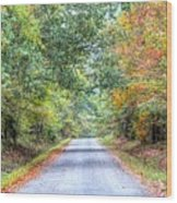 Leaves Changing In The Fall Near Collierville,tn Wood Print