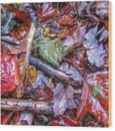 Fall Leaves From The Land North Of Nowhere Wood Print