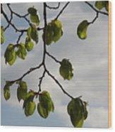 Leaves Wood Print