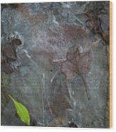Leaves In Ice At Upper Creek Falls Wood Print