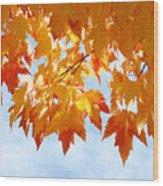 Leaves Nature Art Orange Autumn Tree Leaves Wood Print