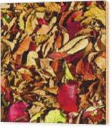 Leaves Of Autumn Wood Print