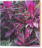 Leaves Of Pink Wood Print