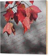 Leaves Of Red Wood Print