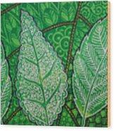 Leaves Of Spring Wood Print