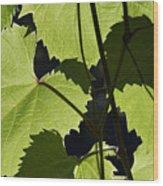 Leaves Of Wine Grape Wood Print by Michal Boubin