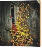 Leaves On An Old Barn Wood Print