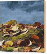Leaves On Rock By River Wood Print