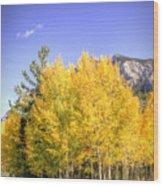 Lee Canyon Aspen Wood Print